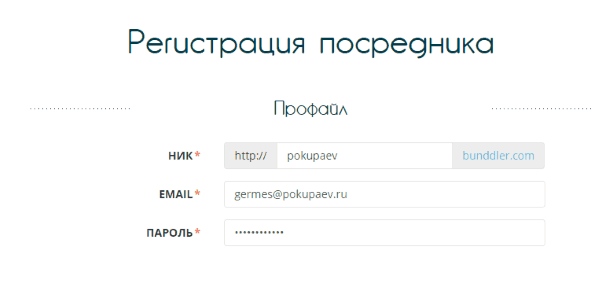 Ввод данных профайла на Bunddler.com
