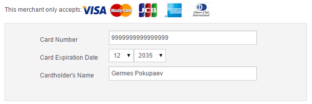 Как покупать на Rakuten.com - ввод реквизитов банковской карты