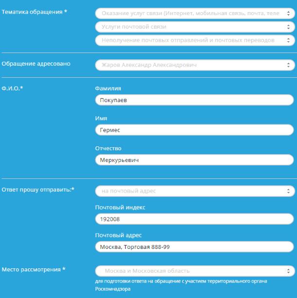 Пример заполнения онлайн-формы на сайте Роскомнадзора
