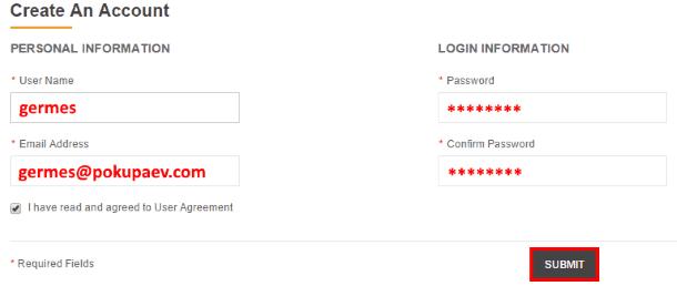 Образец заполнения формы регистрации на DD4.com