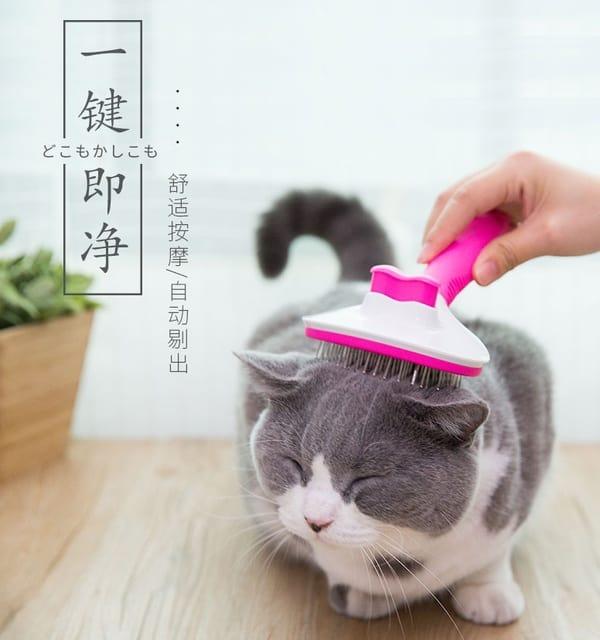 Щётка-чесалка для кошек