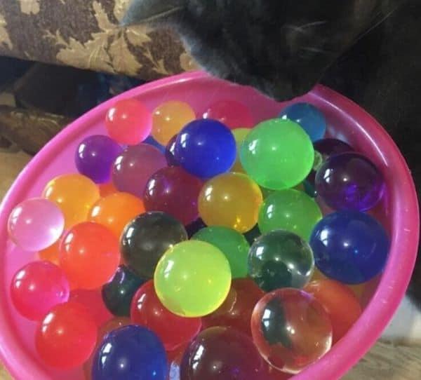Гидрогелевые шарики с Aliexpress