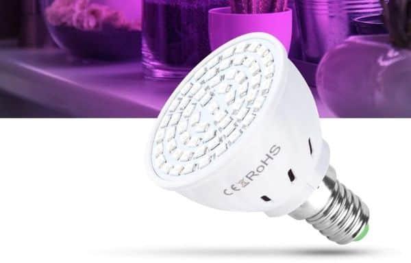 Отзыв на LED-лампы для выращивания растений