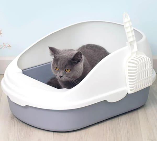 Кошачий лоток, купленный на Aliexpress